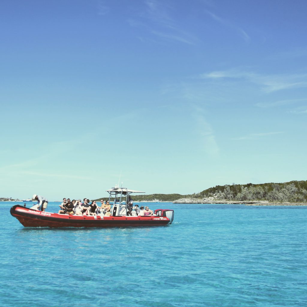 Harbour Safaris